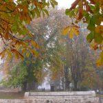 Jardines en otoño